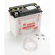 Yumicron High Powered 12-Volt Battery - YB18-LA