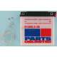 Standard 12-Volt Battery - R12N553B