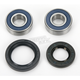 Wheel Bearing and Seal Kit - 25-1385