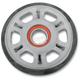 Idler Wheel w/Bearing - 4702-0089