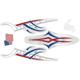 American Flag Power Sticker - 810607
