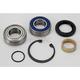 Driveaxle or Jackshaft Bearing and Seal Kit - 141006