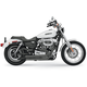 FireSweep Series Exhaust System - 14123D