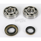 Main Bearing and Seal Kit - K044