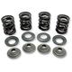Valve Spring Kit - .348 in. Lift - 70-70140
