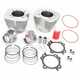 107 in. Bolt-On Big Bore Kit - 201-120W