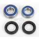 Rear Wheel Bearing Kit - A25-1241