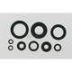 Oil Seal Set - M822114