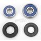 Rear Wheel Bearing Kit - A25-1171