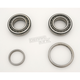 Crankcase Main Bearings - A-9029