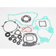 Complete Gasket Set with Oil Seals - 0934-0096