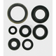 Oil Seal Set - M822176