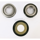 Steering Stem Bearing Kit - PWSSK-Y02-021