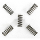 Clutch Springs - FHDS42-5