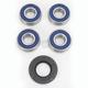 Rear Wheel Bearing Kit - 0215-0743