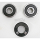 Front Wheel Bearing Kit - PWFWK-H33-000