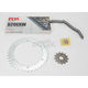 520EXW Chain and Sprocket Kit - 4066-010S