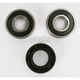 Front Wheel Bearing Kit - PWFWK-H44-000