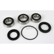 Rear Wheel Bearing and Seal Kit - PWRWS-K14-000