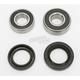 Rear Wheel Bearing Kit - PWRWK-H17-008