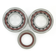 Crank Bearing/Seal Kit - 0924-0227