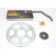 530XSO Chain and Sprocket Kit - 3116-901W