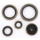 Oil Seal Set - 0935-0036