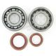 Main Bearing and Seal Kit - K065