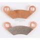 Big Foot Extreme Sintered Brake Pads - WE445315