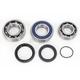 Bearing and Seal Kit - 14-1051