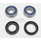 Wheel Bearing and Seal Kit - 25-1218