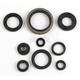 Engine Oil Seal Set - 51-3002