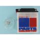 Standard 12-Volt Battery - R12N113A1
