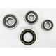 Rear Wheel Bearing and Seal Kit - PWRWS-Y41-000