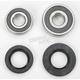 Rear Wheel Bearing Kit - PWRWK-H13-020
