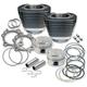 95 in. Cylinder/Piston Kit - 910-0204