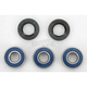 Rear Wheel Bearing Kit - A25-1033