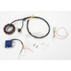 100W DC Electrical System - S-8502