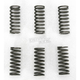 Clutch Springs - FHDS28-6