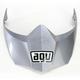 Titanium Gray AX-8 Dual Sport Evo Visor w/Screws - KIT76110001