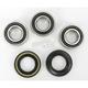 Rear Wheel Bearing Kit - PWRWK-Y39-250