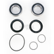 Rear Wheel Bearing Kit - PWRWK-K35-000