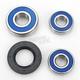 Wheel Bearing and Seal Kit - 25-1272