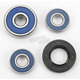 Rear Wheel Bearing Kit - A25-1185