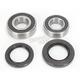 Rear Wheel Bearing Kit - 301-0153
