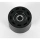 Chain Roller - HO04646-001