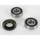 Front Wheel Bearing and Seal Kit - PWFWS-S04-000