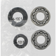 Crank Bearing/Seal Kit - 0924-0102