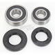 Rear Wheel Bearing Kit - 301-0132
