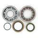 Crank Bearing/Seal Kit - 0924-0219